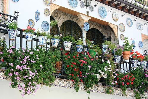 Balcony with flowers in Albayzin
