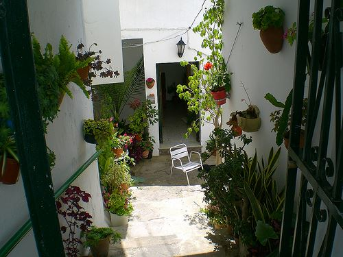 Patio, Conil