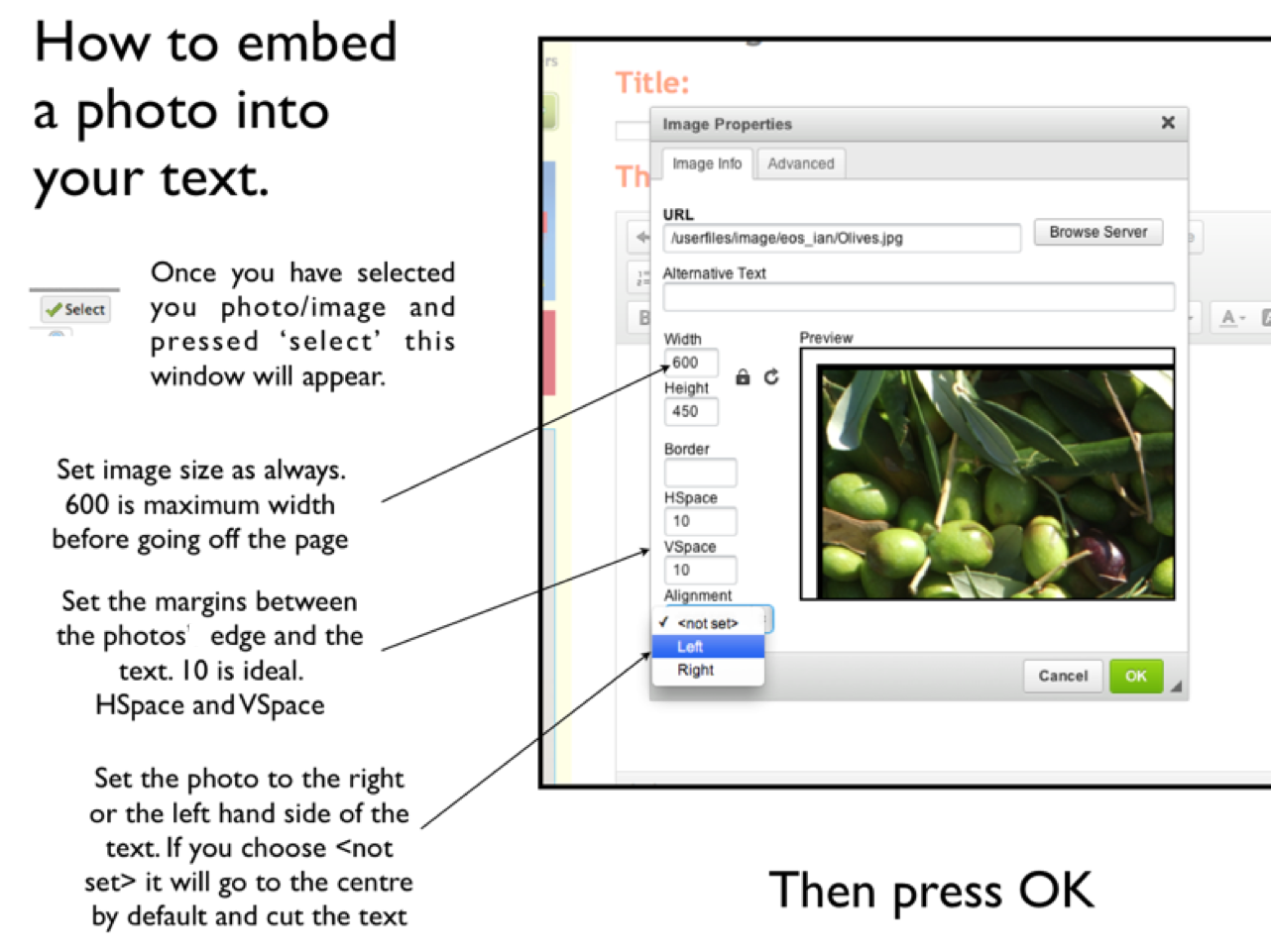 Eos update how to embed a photo into the text of your for Embed a forum into your website
