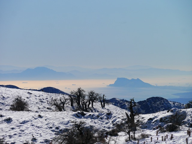 When snow comes to la sierra. Photo G Rafa Flores, RF Natura