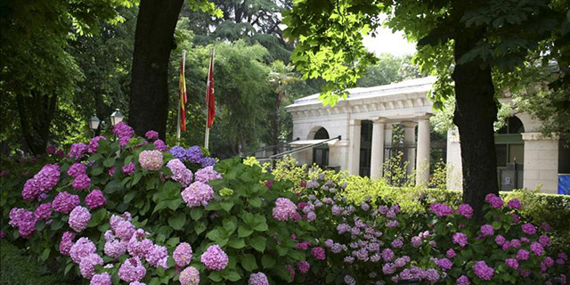 Madrid 39 s botanical garden for Jardin botanico madrid precio